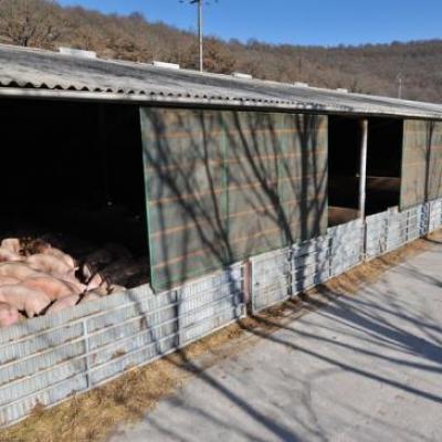 Bâtiment d'engraissement des porcs